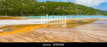 Terrazas ventilador fuera de vivos colores de la Grand Prismatic Spring, en el parque nacional Yellowstone, Wyoming.