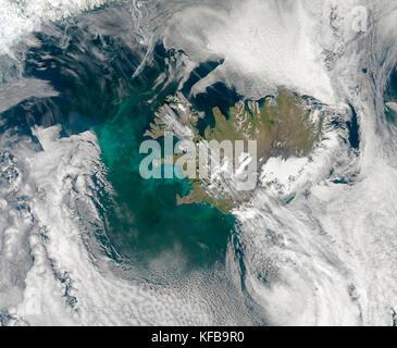 Plancton: Uno de los mayores observan regularmente flores ocurre en el norte del Océano Atlántico, cerca de Islandia y Groenlandia, en el hemisferio norte