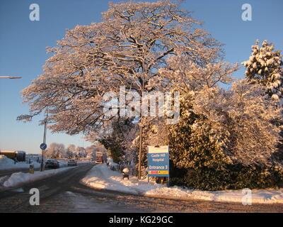 Cottingham nieve
