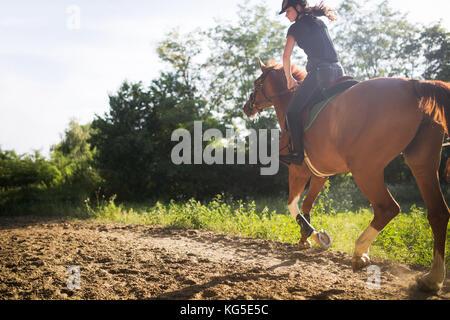 Retrato de mujer joven en caballo en campo