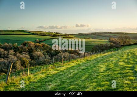 Una escena otoñal a través de rolling cornish cultivables, una valla teniendo su ojo a través de campos de hierba y árboles hacia la costa en el sol de la tarde.