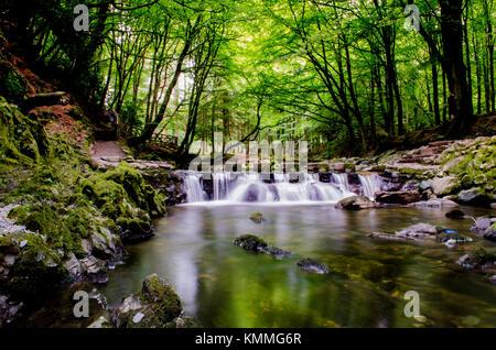 Parque Forestal Tollymore Stepping Stones, una ubicación utilizada por la famosa serie de televisión 'Juego de Tronos' Foto de stock