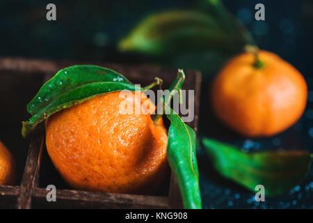 Close-up de mandarinas en una caja de madera sobre un fondo oscuro. Gotas de agua sobre una superficie. Fotografía de alimentos oscuro con fruta naranja vibrante y copie el espacio
