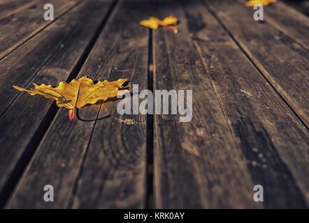 Cerca de hojas amarillas sobre fondo de madera oscura.