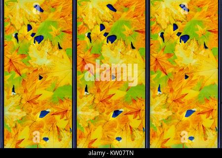 Imagen de un vitral con motivos de otoño en tonos amarillos para utilizar como fondo.