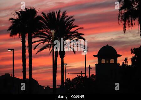 Cuatro palmeras enormes siluetas contra un dramático rosa y naranja el cielo lleno de nubes al final de un día de invierno en California, un edificio abovedado,cerca de luces