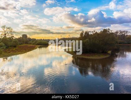 Hermoso paisaje de la reserva natural del Delta Sauer por la tarde, en el norte de Alsacia, Francia, Europa.