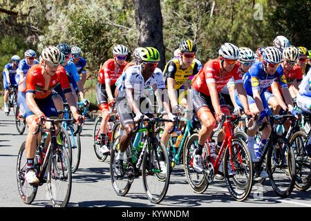 Adelaida, Australia. 17 de enero de 2017. El pelotón poco después del comienzo de la fase 2 del Tour Down Under Foto de stock
