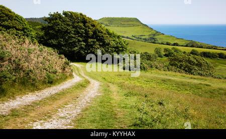 Vía cerca Charmouth en Dorset hacia Golden Tape el punto más alto de la sección sur de la costa sur oeste de Path UK