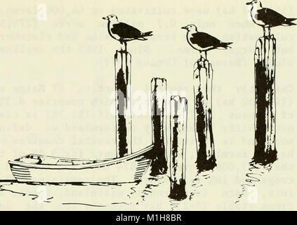 Una caracterización ecológica de la costa de Maine (norte y este de Cape Elizabeth) (1980) (20954157210)
