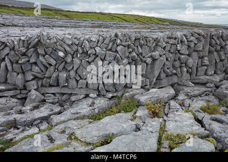 Muro de piedra y pavimento de piedra caliza, el Burren, en el condado de Clare, Irlanda.