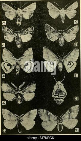 Boletin de la Sociedad de Biología de Concepción (1972) (20361398686)