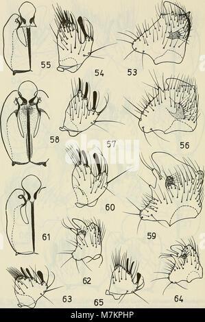 Boletin de la Sociedad de Biología de Concepción (1983) (20362207876)