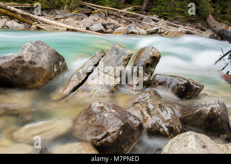 En el cañón del río Coquihalla Provincial Park, cerca de esperanza, British Columbia