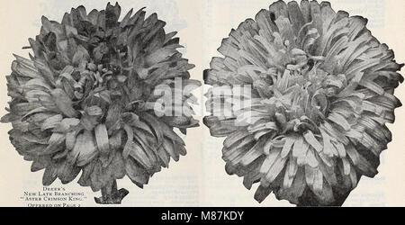 Lista de precios al por mayor del Dreer spring edition Abril de 1910 Junio - plantas de semillas y bulbos para floristas, fertilizantes, insecticidas, herramientas, artículos, etc (1910) (20436878933)
