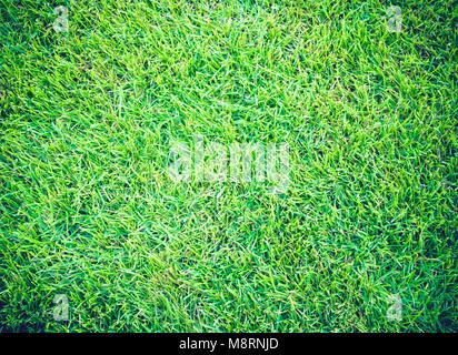 Campos de Golf de césped verde fondo de textura patrón
