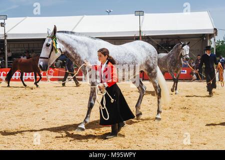 Córdoba, Andalucía, España : Andaluz y horsegirl thoroughbred mare en la Feria del Caballo de Córdoba.
