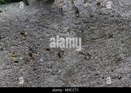 Textura de piedra rugosa cara dividida. Rocas grange antecedentes para sitio web o dispositivos móviles