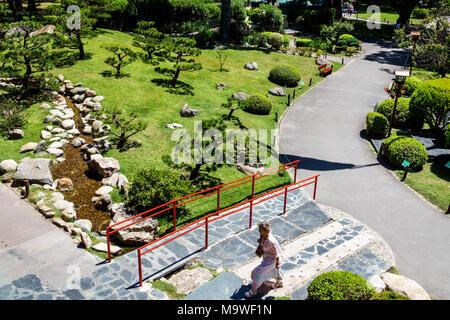 Buenos Aires Argentina,Recoleta,Jardín Japonés Jardin Japones,Botánico,Vista superior,Camino,Hispano,ARG171130077