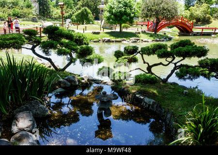 Buenos Aires Argentina,Recoleta,Jardín Japonés Jardin Japones,Botánico,bonsai,Fuente,Hispana,ARG171130093