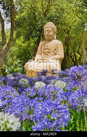 Una de las muchas estatuas de Buda en el jardín de Edén de Buda, que consta de 35 hectáreas (86 acres) de los campos naturales, lagos, jardines de una hora