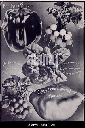 . Lista de precios al por mayor del Dreer spring edition Abril de 1910 Junio : plantas de semillas y bulbos para floristas, fertilizantes, insecticidas, herramientas, artículos, etc .