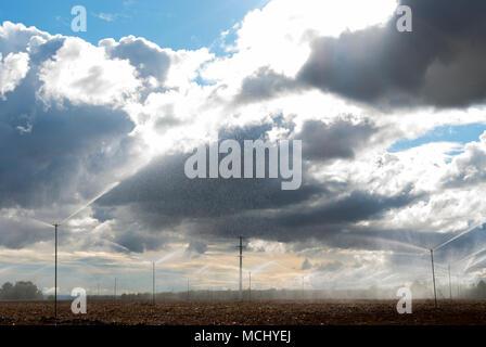Campos con riego con aspersores en un día nublado