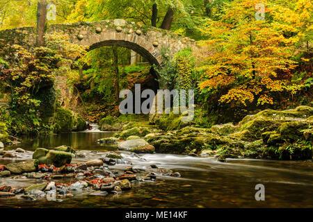 Un disparo otoñal de Foley's puente sobre el río Shimna en Tollymore Park en el Condado de Down, Irlanda.