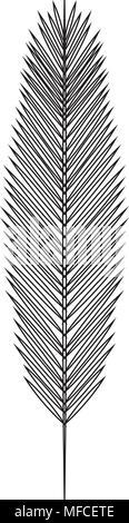 Leaf palm icono aislado Foto de stock