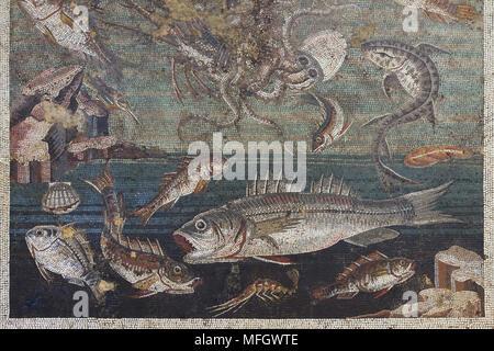 Pez representado en el mosaico romano del triclinio de la Casa del Fauno (Casa del Fauno en Pompeya, ahora en exhibición en el Museo Arqueológico Nacional (Museo Archeologico Nazionale di Napoli) en Nápoles, Campania, Italia.