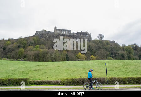 Stirling, Escocia, Reino Unido - 29 de abril de 2018: el hombre en una bicicleta se detiene y utiliza el teléfono móvil underneith Castillo de Stirling, Escocia.
