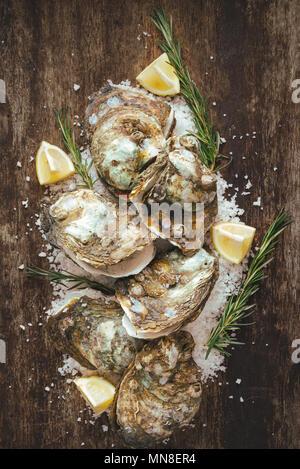 Docenas de ostras frescas en la madera y sal de mar. Vista superior