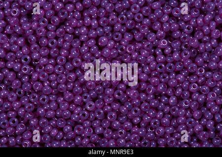 Cerca del hermoso púrpura cordones de semillas.