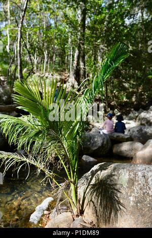 Los niños sentados en las rocas en Rollingstone Creek, el Parque Nacional Paluma, Rollingstone QLD, Australia