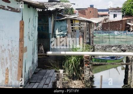 RECIFE, PE - 21.10.2015: FAVELA DO NO BUEIRO RECIFE - Aglomerado de casas de madeira ou em comunidade ribeirinha palafitas do Río Capibaribe, no Recife (PE). (Foto: Diego Herculano / Fotoarena)