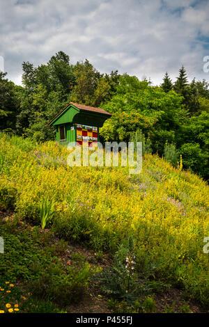 Colmena de madera tradicional y colorida en el jardín de hierbas. Las colmenas son pintadas para permitir que las abejas encontrar sus colmenas.