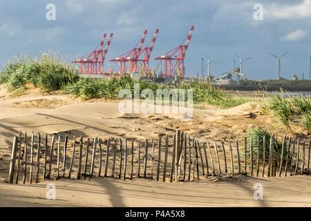 Crosby, Merseyside. El clima del Reino Unido. 21 de junio de 2018. . Sol en la costa con vientos blustry causando la erosión de las dunas de arena. Esta valla sandbreak arena o nieve, como una valla, se utiliza para la fuerza de viento, arena deriva a acumularse en el lugar deseado. Cercas de arena se emplean para controlar la erosión y contribuir a la estabilización de dunas de arena. Grúas Megamax en el horizonte puede cargar y descargar buques y 22 CRMGs, que pesa 1.000 toneladas cada parte del desarrollo de Liverpool2 Seaforth Dock. Crédito: MediaWorldImages/Alamy Live News Foto de stock