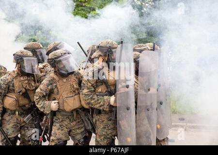 Los Marines de Estados Unidos con un fin especial Marine Air-Ground Task Force-Crisis Response-Africa forma un muro de escudos para proteger simulada de la Embajada de EE.UU. durante un ejercicio de control de disturbios en el Centro de Formación de la Gendarmería Nacional en Saint Astier (Francia), 13 de mayo de 2016. Los infantes de Marina formó junto a la Gendarmería Nacional Francesa para operar a través de un humo denso y gas CS manteniendo rigurosamente organizado formaciones. (Ee.Uu. Foto del Cuerpo de Infantería de Marina por el sargento. Tia Nagle/liberado) Foto de stock