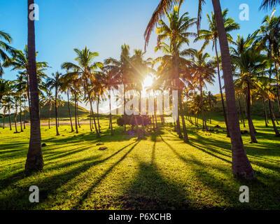 Las palmeras en la playa de Anakena, Isla de Pascua, Chile
