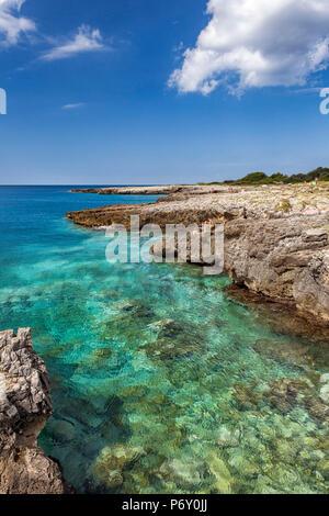 Italia, Italia, Apulia, Puglia. Salento, península de Salento. Distrito de Lecce. Nardò. Porto Selvaggio Reserva Natural.