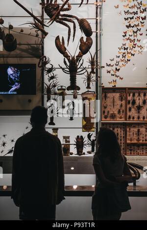 El Museo de Historia Natural es uno de los mayores museos de ...