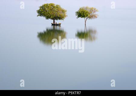 Dos árboles y un barco en un área inundada de india única y hermosa campiña con reflejos de luz en la India Foto de stock