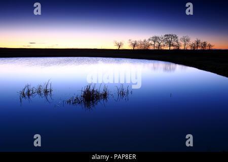 España, Castilla y León, en la provincia de Zamora, Reserva natural de las Lagunas de Villafafila, lago al atardecer