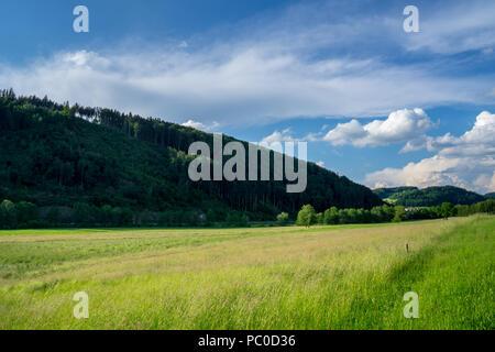 Alemania, valle Elz naturaleza del paisaje en el bosque negro en la luz de la tarde