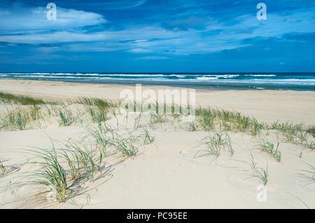 Famoso setenta y cinco millas de la playa en la isla Fraser.