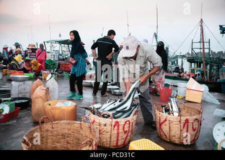 La mañana mercado de pescado, en las orillas del río Chhu Preaek Tuek en Kampot town, Camboya, Indochina, en el sudeste de Asia, Asia