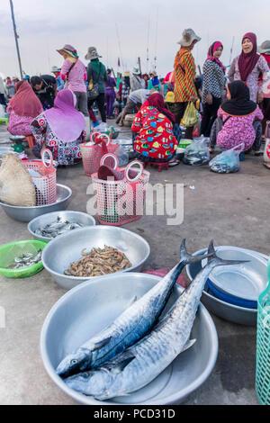 Mañana, mercado de pescado, en las orillas del río Chhu Preaek Tuek en Kampot town, Camboya, Indochina, en el sudeste de Asia, Asia