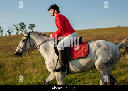 La amazona en un caballo rojo. Paseos a caballo. Las carreras de caballos. Jinete sobre un caballo.