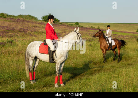 A caballo. Dos mujeres atractivas cabalgar sobre un verde prado. Paseos a caballo. Las carreras de caballos. Jinete sobre un caballo.