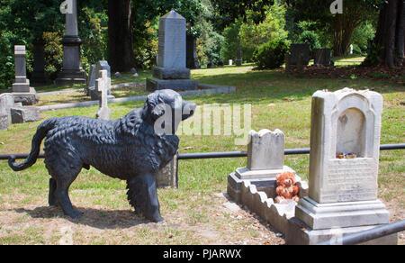 Estatua de perro en childs grave en Richmond, Virginia